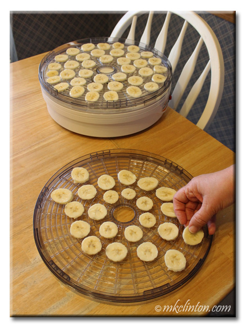 Banana slices on a dehydrator racks