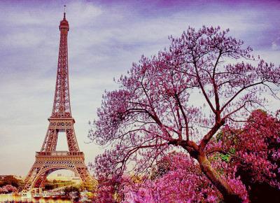 Paris Eiffel Tower Tumblr  free download wallpaper