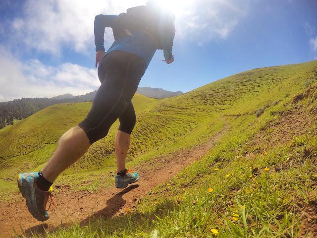 Corriendo entre praderas