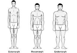 تعرف على نوع جسمك والتمارين التي تناسبه