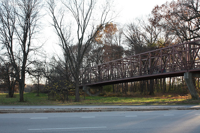 The pedestrian bridge crossing Higgins Road joining two parts of Busse Woods.