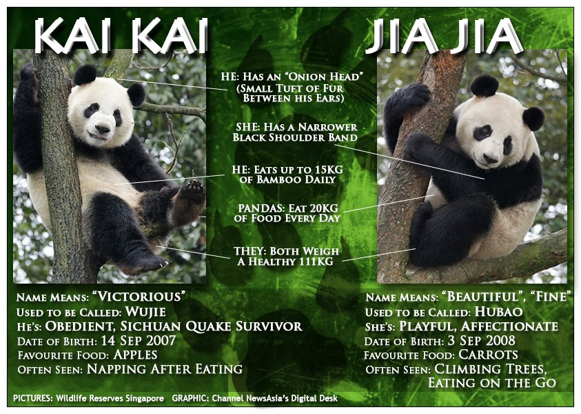 Kai Kai  is also called
