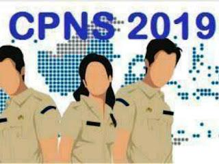Kabar Gembira, Rekrutmen CPNS Akan Dibuka Bulan Juni, Rekrutmen PPPK Tahap II Akan Dibuka Bulan April