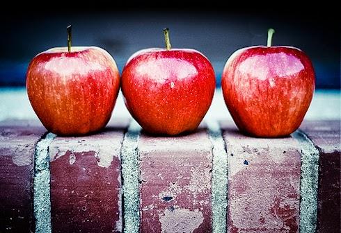 gökten 3 elma düşmüş ile ilgili görsel sonucu