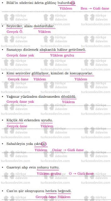 8.Sınıf Dörtel Yayınları Türkçe Çalışma Kitabı 97. 98. 99. 100. 101. 102. Sayfa Cevapları