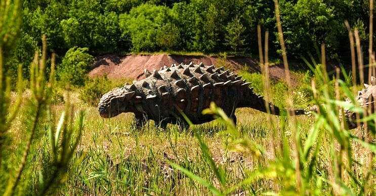 Ankilozor, 65 ila 68 milyon yıl önce Kuzey Amerika'da yaşadığı düşünülen bir dinozordur.