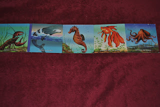 Animale subacvatice, editura Gama