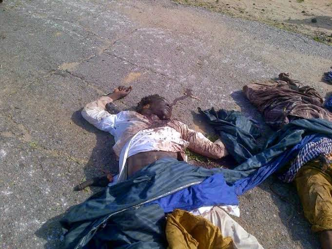 1 Viewers Discretion Is Adviced!! See Pics Of Boko Haram Militants Nilled By Nigerian Troops (Graphic Photos)