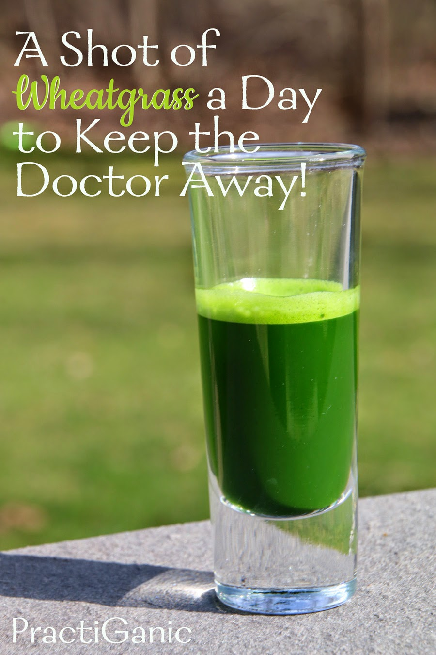 Why I Love Wheatgrass