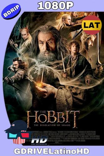 El Hobbit: La Desolación De Smaug (2013) EXTENDED 1080p LAT-CAS-ING MKV