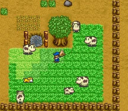 http://4.bp.blogspot.com/-DWU9kEzVE6o/TelhIhPX3_I/AAAAAAAABHE/CXi5GbL5tuA/s1600/HarvestMoon_SNES_game.jpg