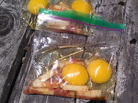 two eggs, cheese, seasoning salt, and bacon bits, unmixed, in a ziploc bag