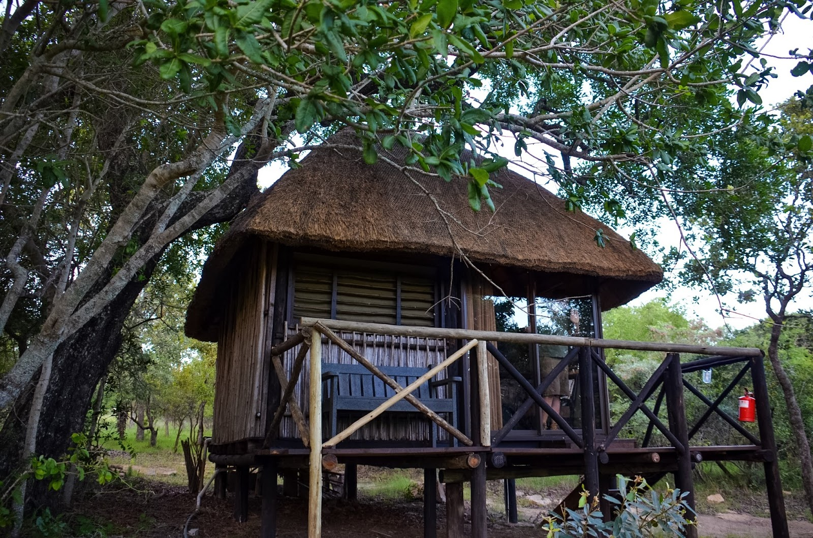 marcs treehouse camp