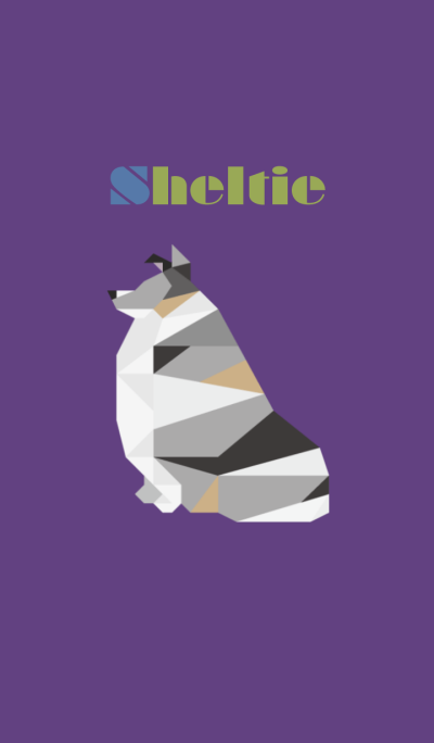 Sheltie(Blue merle)