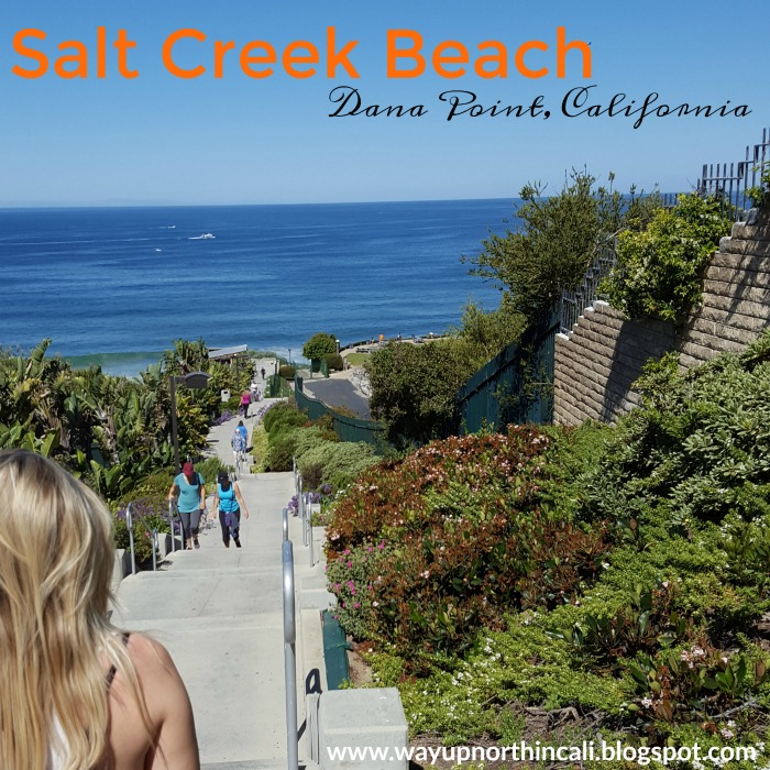 Salt Creek Beach Dana Point California Www Wayupnorthincali Blo