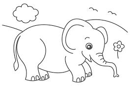 Cute Elephant Coloring Pages Animals