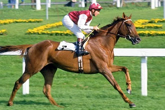 Oh So Sharp trained by Henry Cecil - winner of the Triple Crown