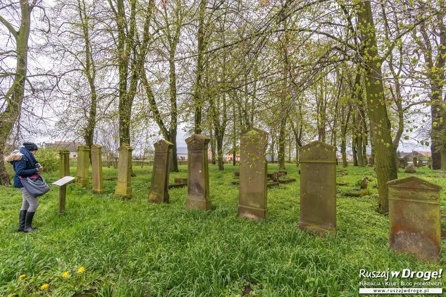 Cmentarz Mennonicki w Stogach