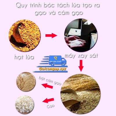 quy trình xay sát gạo