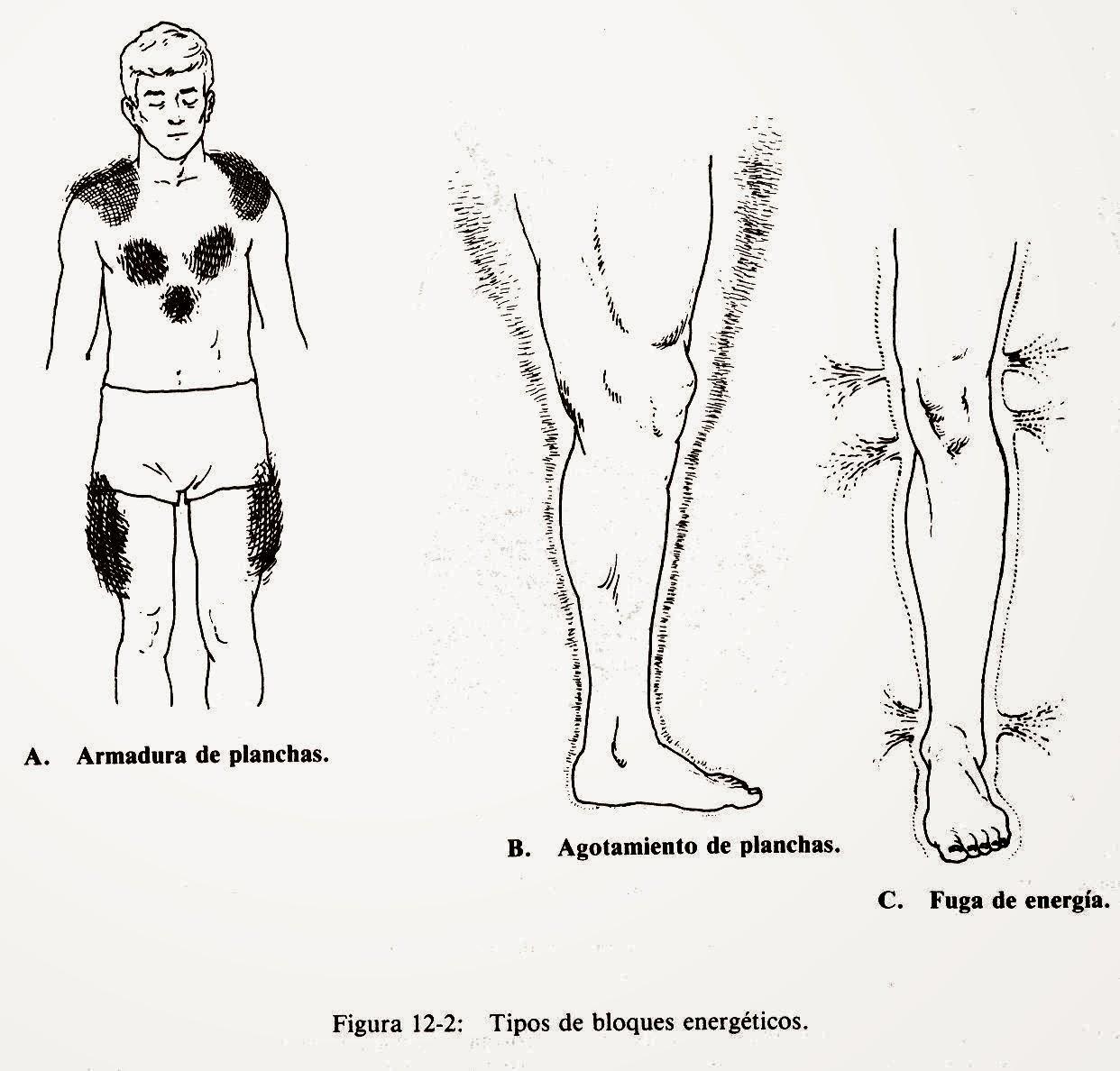 Figuras de Barbara Brennan indicando bloqueos energeticos en hombre