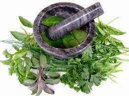 nama obat alami untuk penderita kencing nanah paling ampuh