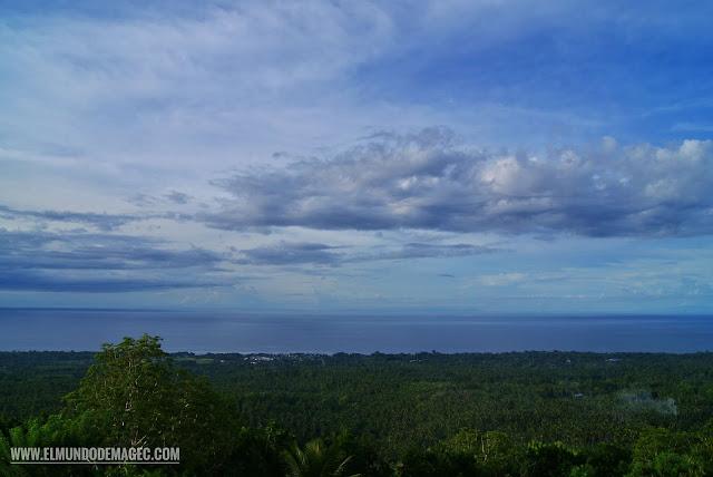 Camiguin-la-isla-verde-que-ver-hacer-bosque-palmeras