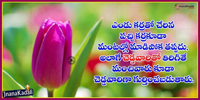 Telugu Best Inspirational life Quotes with best images and cool wall papers,Here is a Telugu Language Top Motivated Quotations for All, Telugu Jnanam Quotations online, Popular Telugu Jnana Telugu Messages, Telugu Inspiring Motivated  Lines for Friends, Every Thing Quotations in Telugu, Telugu Popular and Best Lines for Good Friends online, Hard Work Quotes and Sayings in Telugu,Learn Everything your Self Quotations in Telugu