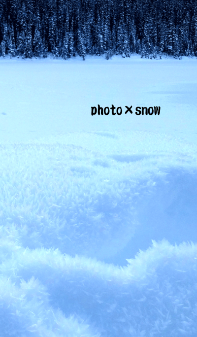 photo*snow