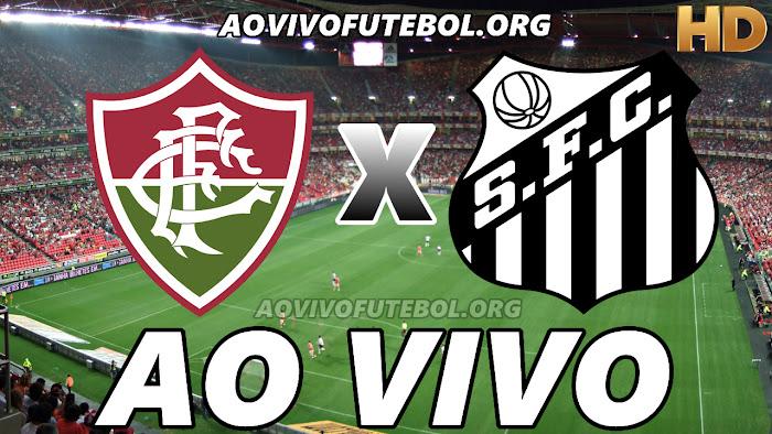 Assistir Jogo do Fluminense x Santos Ao Vivo