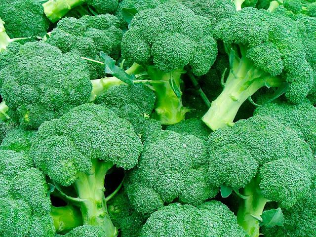 Benefícios do brócolis a saúde,Alimento do bem,Alimentação Saudável,Dicas de Saúde,Reeducação Alimentar,reduz colesterol,facilita a digestão,previne doenças