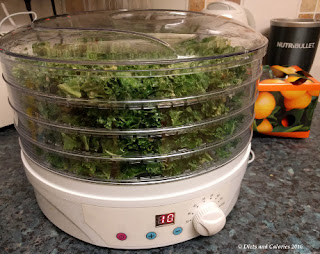 Leave the dehydrator to do its stuff