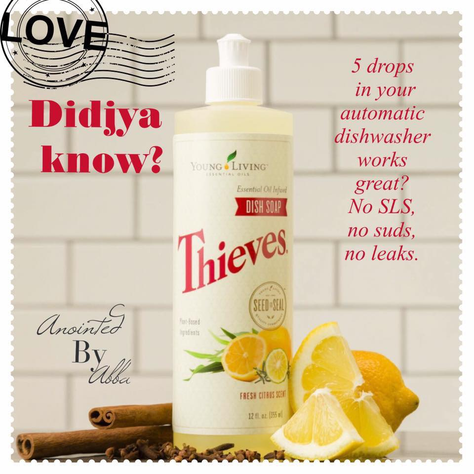 Thieves Liquid Dish Soap Anointed By Abba