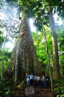 ebogo ecotourisme