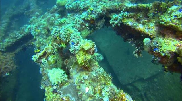 Bawah Laut Pulau Cubadak