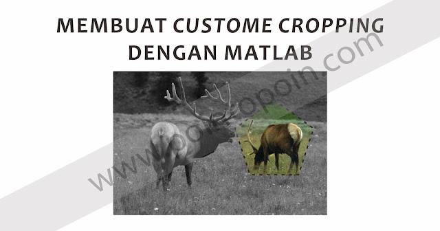 Membuat Custome Cropping dengan Fungsi ROI pada MATLAB