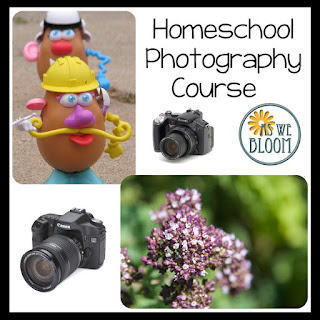 https://aswebloom.blogspot.com/search/label/homeschool%20photography