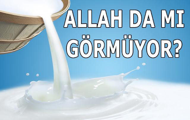 kova, bakraç, süt, inek sütü, süt koymak