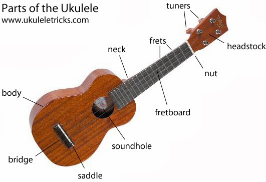 30s uke girl: beginner sessions stringing a ukulele diagram a circuit diagram of a torch