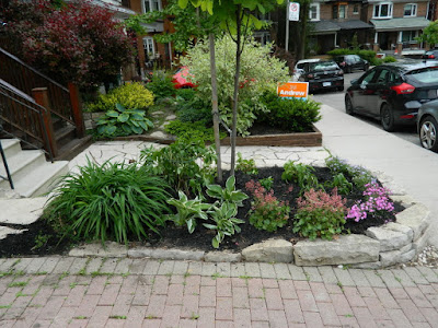 by Paul Jung Gardening Services--a Toronto Gardening Company new front makeover in Wychwood after