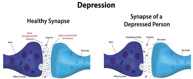 sinapse cerebral e depressão
