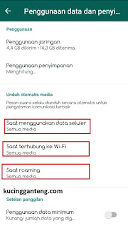 Cara Menonaktifkan Fitur Auto Download Media di WhatsApp