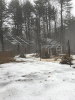 Off Grid Living in New England