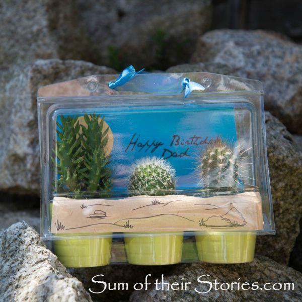 Ikea cactus trio gift wrap idea