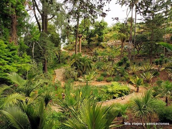 Jardín de México, Palacio de Monserrate, Sintra, Portugal