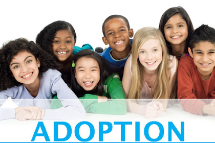 Adoption Laws In Florida