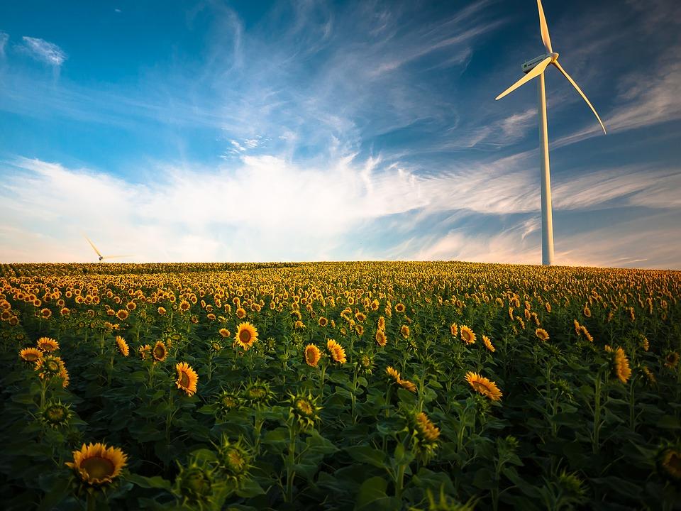 źródła odnawialnej energii