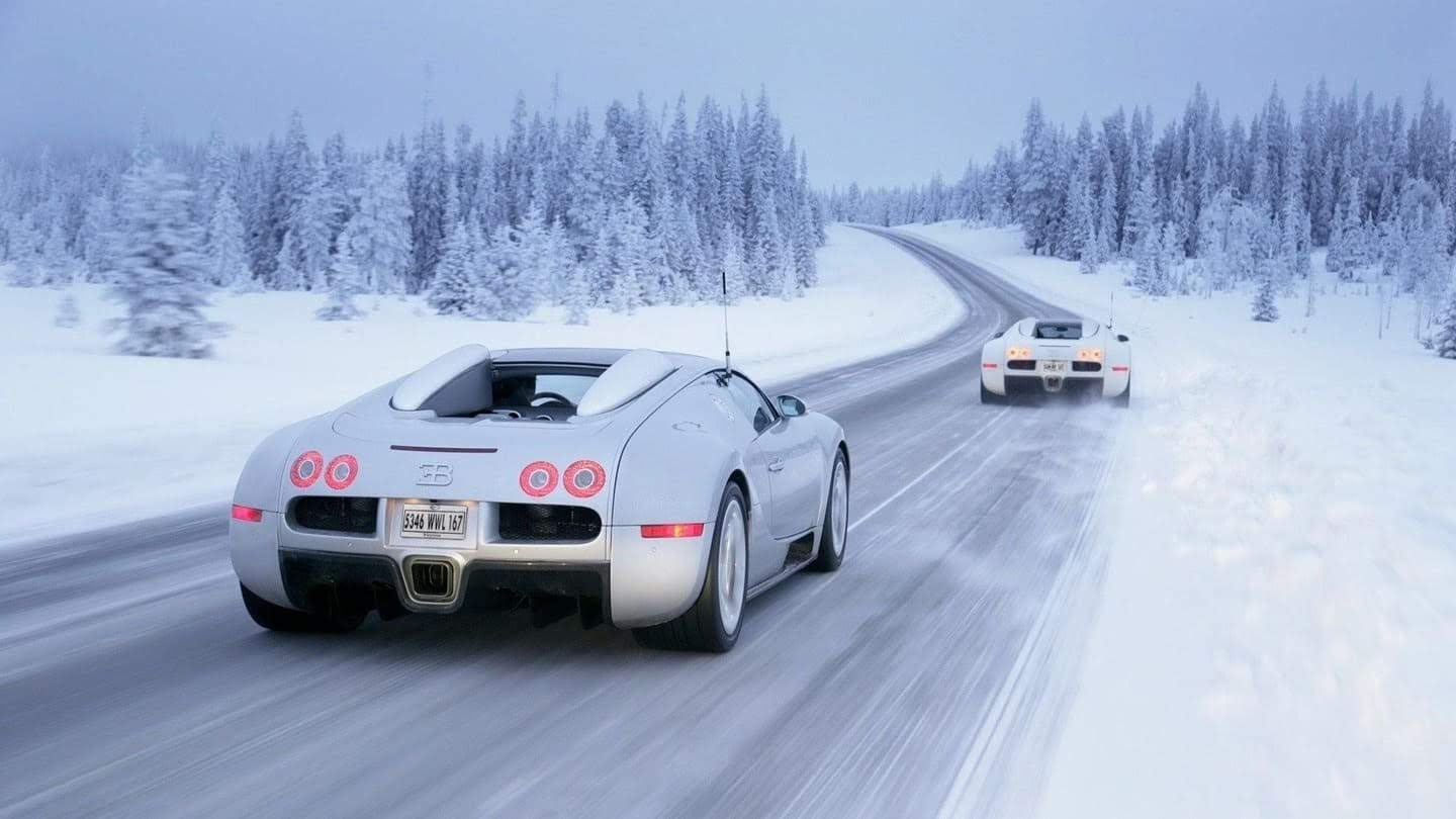 Snow winter, animal, super car, beetle wallpaper