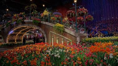 Philadelphia Flower Show este año viaja a Holanda