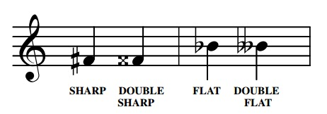 A sharp raises notes by a semitone - a double sharp raises notes by two semitones. Similarly a double flat lowers notes by two semitones.