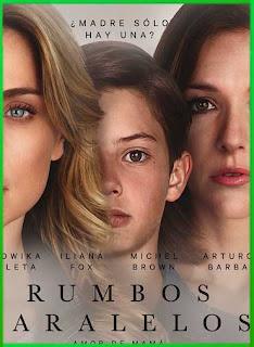 Rumbos Paralelos (2016)   DVDRip Latino HD GDrive 1 Link